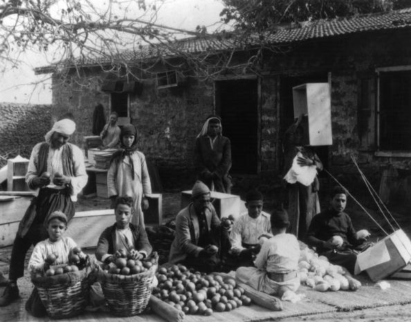 Middle Eastern Ethnicity「Orange Sorting」:写真・画像(11)[壁紙.com]