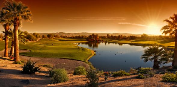 Green - Golf Course「Palm Desert Golf Panorama Landscape」:スマホ壁紙(16)