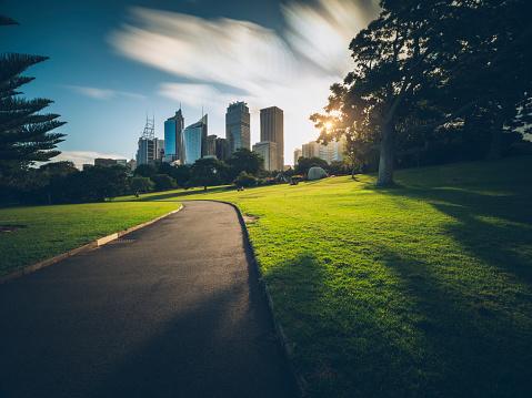Botanical Garden「Sydney CBD」:スマホ壁紙(10)