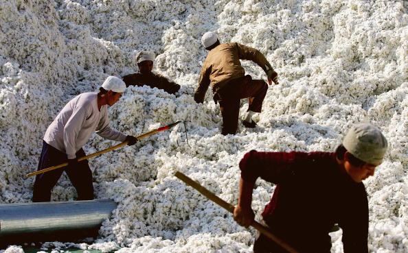 Textile「Migrant Workers Trek To Xinjiang To Make Fortunes」:写真・画像(1)[壁紙.com]