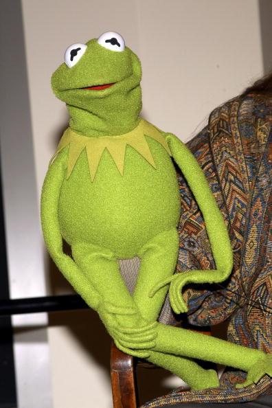Full Length「Muppet Kermit the Frog appears at Barnes & Noble...」:写真・画像(7)[壁紙.com]