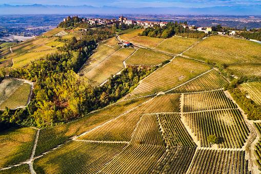 Piedmont - Italy「Barolo Wine Region in Autum, Piedmont, Italy」:スマホ壁紙(14)