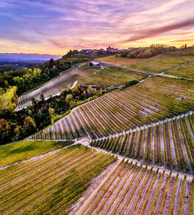 Piedmont - Italy「Barolo Wine Region in Autum, Piedmont, Italy」:スマホ壁紙(1)