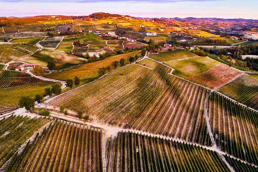 Piedmont - Italy「Barolo Wine Region in Autum, Piedmont, Italy」:スマホ壁紙(0)