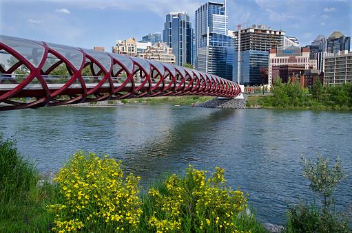 Footbridge「Calgary Peace Bridge」:スマホ壁紙(4)