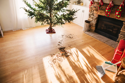 とげ「Pine needles on living room floor after setting up a Christmas tree」:スマホ壁紙(10)