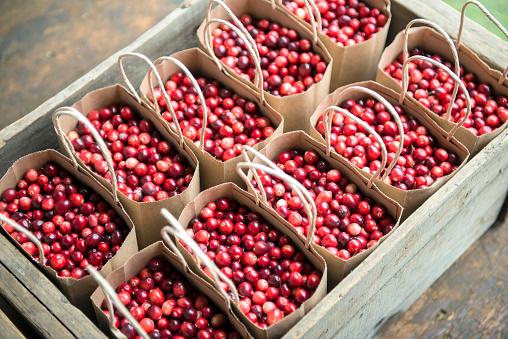 Market Stall「Cranberries (Vaccinium macrocarpon) in paper bags, Wareham, Massachusetts, New England, USA」:スマホ壁紙(9)