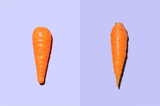 Two Objects「Plastic carrot beside real carrot」:スマホ壁紙(16)
