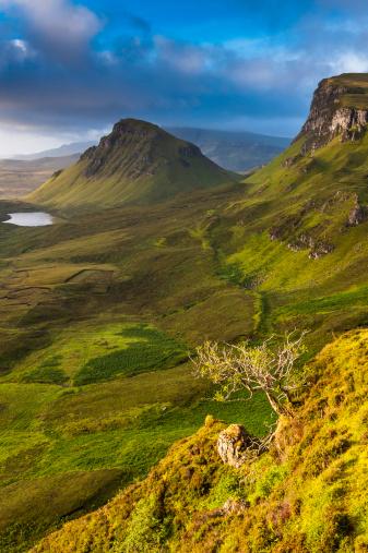 Quirang「Scotland wild landscape golden light mountain ridge Highlands」:スマホ壁紙(5)