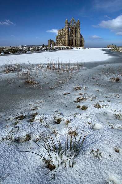 Benedictine「Whitby Abbey」:写真・画像(17)[壁紙.com]