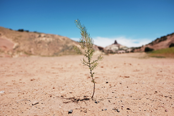 New Mexico「Rising Temperatures And Drought Conditions Intensify Water Shortage For Navajo Nation」:写真・画像(9)[壁紙.com]