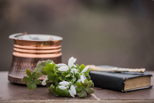 Side View「Flowers next to a bible and bowl」:スマホ壁紙(14)