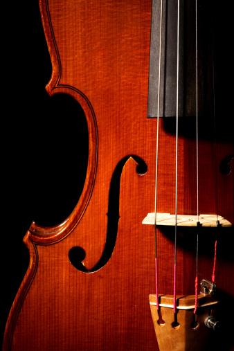 Violin「Violin Close-Up」:スマホ壁紙(12)