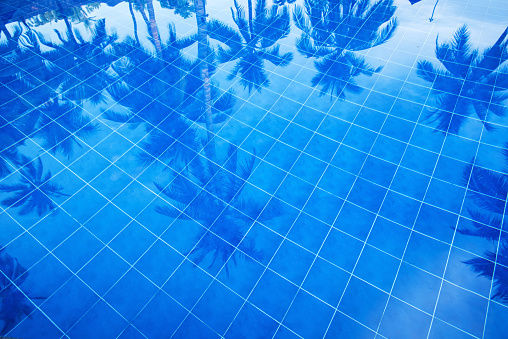 Water Surface「Reflection of palm trees over swimming pool」:スマホ壁紙(0)
