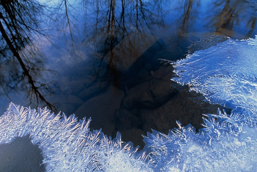 Choosing「Reflection and Frost on a Pond」:スマホ壁紙(0)