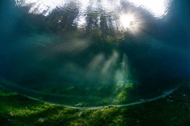 Austria, Styria, Tragoess, Upward view under water at the Green Lake:スマホ壁紙(壁紙.com)