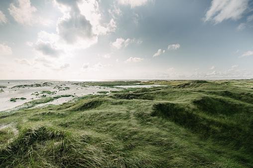 Coastline「Coast Landscape Island of Amrum」:スマホ壁紙(16)