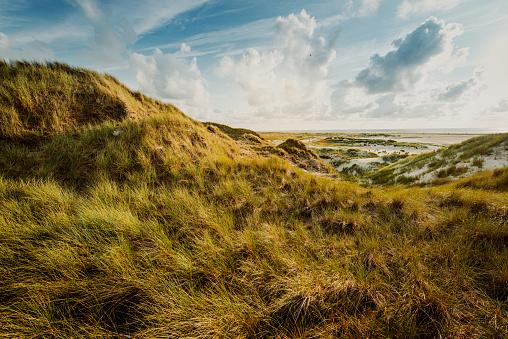 Storm「Coast Landscape Island of Amrum」:スマホ壁紙(8)