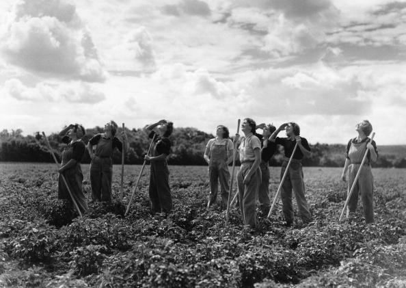 農村の風景「Land Girls」:写真・画像(18)[壁紙.com]