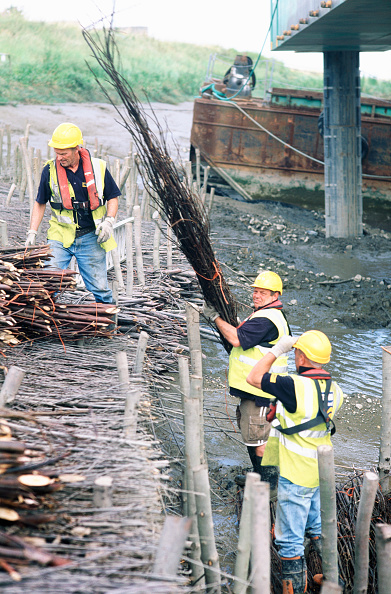 Reflective Clothing「Lifting in and laying the brushwood faggot bundles between driven timber stakes on the Dartford creek for erosion protection on two bends, Dartford faggots」:写真・画像(12)[壁紙.com]