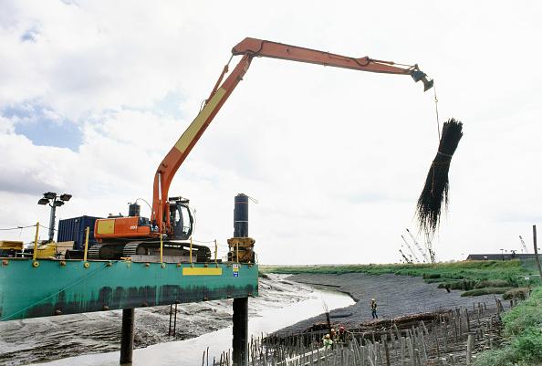 Reaching「Lifting in faggots using the long reach Hitachi excavator on the hack up barge, Dartford Creek erosion control, Kent, UK」:写真・画像(6)[壁紙.com]