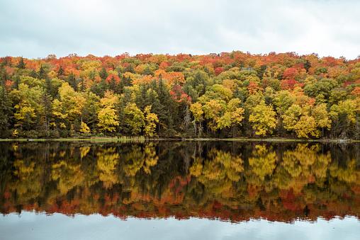 Adirondack Mountains「Fall foliage landscape.」:スマホ壁紙(18)