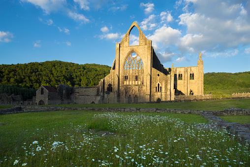 Abbey - Monastery「Tintern Abbey at Sunset」:スマホ壁紙(19)