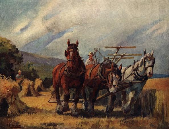 Spencer Arnold Collection「Harvest Time」:写真・画像(1)[壁紙.com]