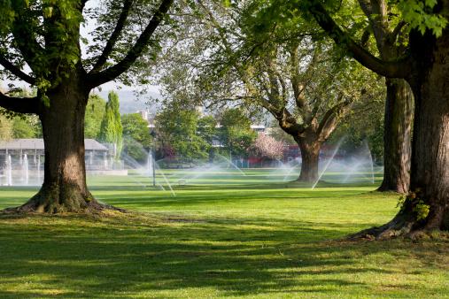Sprinkler「Lawn sprinklers in the park」:スマホ壁紙(11)