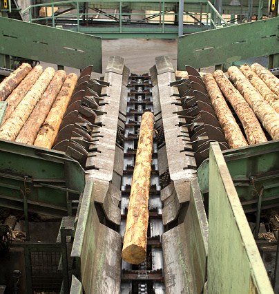 Lumber Industry「Cutting line in a saw mill showing logs」:スマホ壁紙(16)