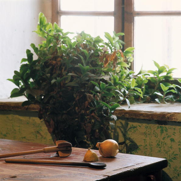 Kitchen「Wooden beater and spoon, as well as half a lemon and an onion on a table in front of a window, With a plant in the background, Homestead in Streith in the Austrian Waldviertel, Photograph, Around 2004」:写真・画像(11)[壁紙.com]