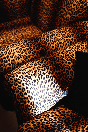Leopard pattern「Leopard pattern chairs」:スマホ壁紙(18)