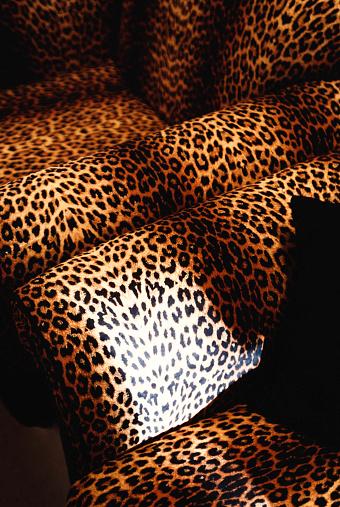 Leopard Print「Leopard pattern chairs」:スマホ壁紙(11)