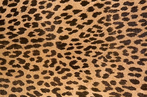 Leopard pattern「Leopard patterned fabric pattern」:スマホ壁紙(0)