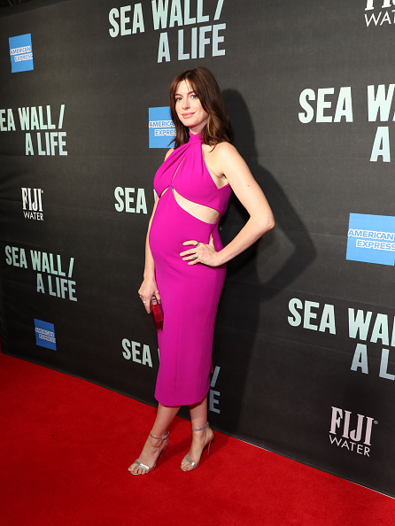 Hot Pink「FIJI Water At Sea Wall / A Life Opening Night On Broadway」:写真・画像(9)[壁紙.com]