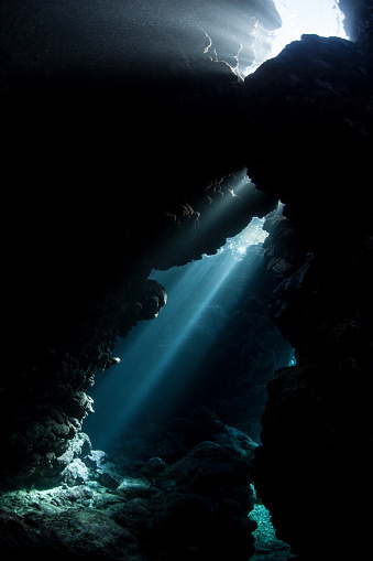 Sunbeam「Sunlight descends underwater and into a crevice in a reef in the Solomon Islands.」:スマホ壁紙(17)