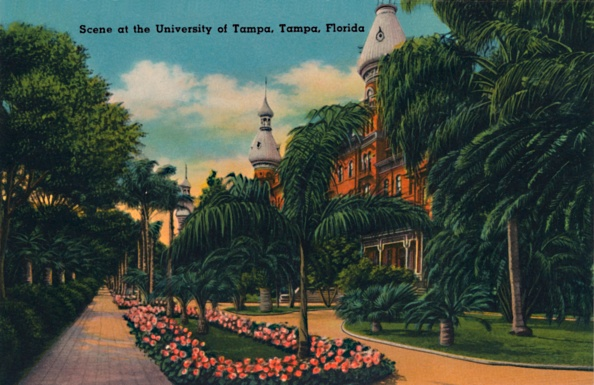 Tampa「Scene At The University Of Tampa」:写真・画像(6)[壁紙.com]