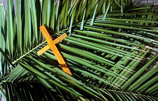 Indigenous Culture「Wooden Cross on palm leafs Palm Sunday」:スマホ壁紙(4)