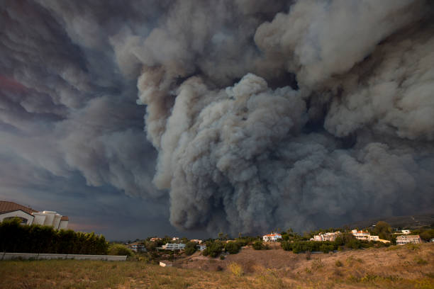 Fast-Spreading Hill and Woolsey Fires Force Evacuations In California's Ventura County:ニュース(壁紙.com)