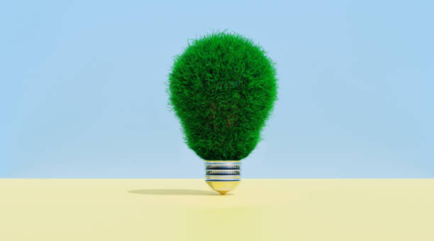 Light bulb covered in grass shows concept of thinking green:スマホ壁紙(壁紙.com)