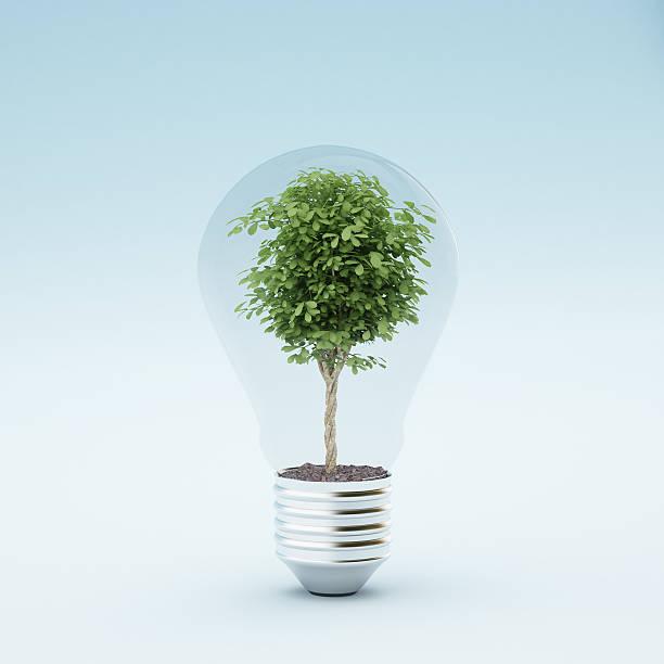 Light bulb with plant:スマホ壁紙(壁紙.com)