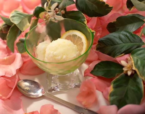 Lemon Sorbet「Lemon sorbet」:スマホ壁紙(9)
