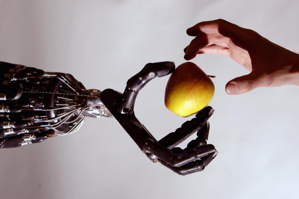 Human Hand「Robotic Snake Is Displayed In Science Museum's Dana Centre」:写真・画像(8)[壁紙.com]