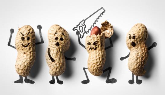 Peanut - Food「Just nuts」:スマホ壁紙(7)