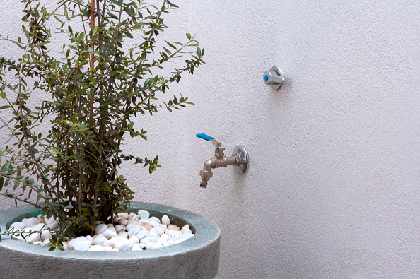 2008「House plant by wall with tap」:写真・画像(2)[壁紙.com]