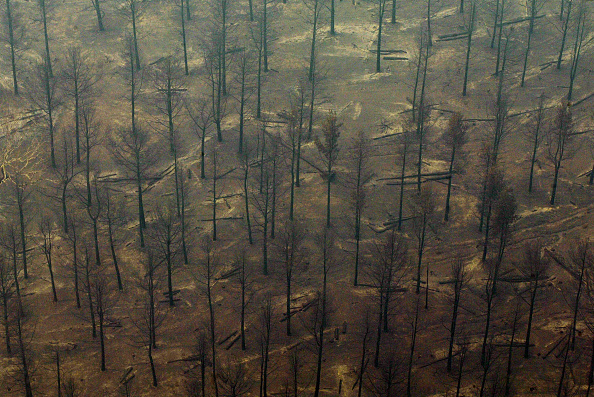 High Angle View「Australia Threatened by Climate Change Outlook」:写真・画像(2)[壁紙.com]