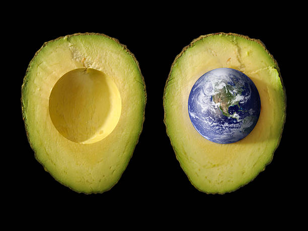 Seed of Life; Planet Earth as Pit in Green Avocado:スマホ壁紙(壁紙.com)