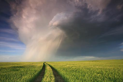 雨「プレーリーの嵐」:スマホ壁紙(3)