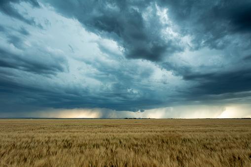 Mammatus Cloud「Prairie Storm Saskatchewan Canada」:スマホ壁紙(2)