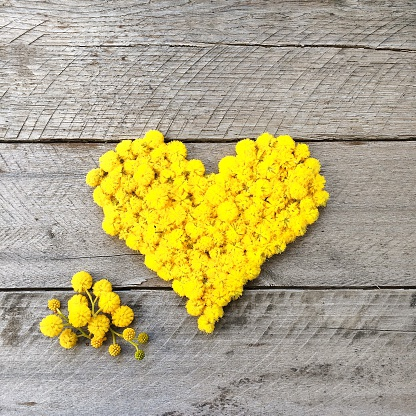 ハート「Yellow heart made from wattle flowers」:スマホ壁紙(7)